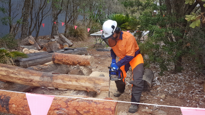 Chainsaw Training (Group Bookings) NSW Wide